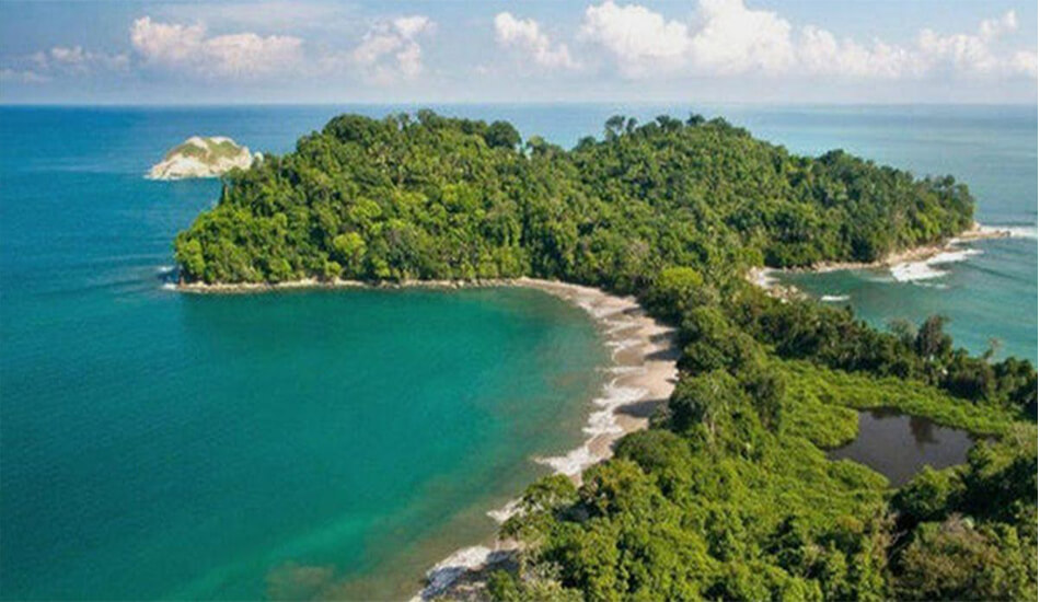 Manuel Antonio, Whale Watching Tour