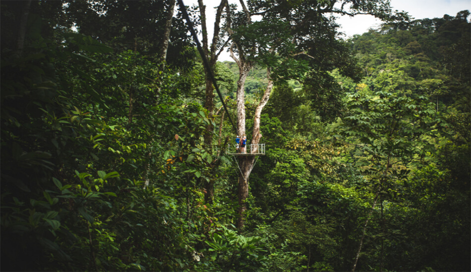 The Caribbean Costa Rica, Zip Line Pacuare Lodge